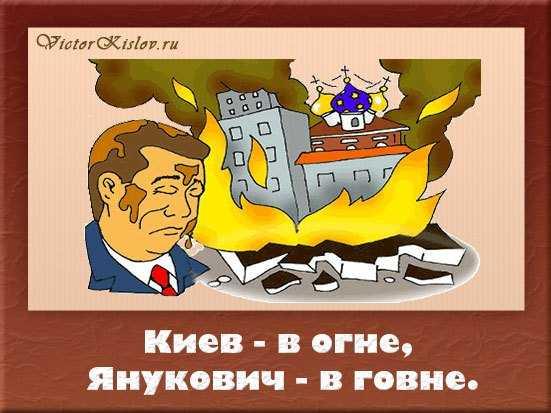киев, янукович