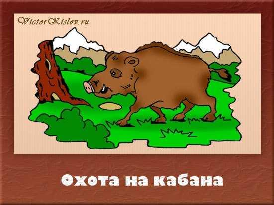 охота на кабана, охота в горах