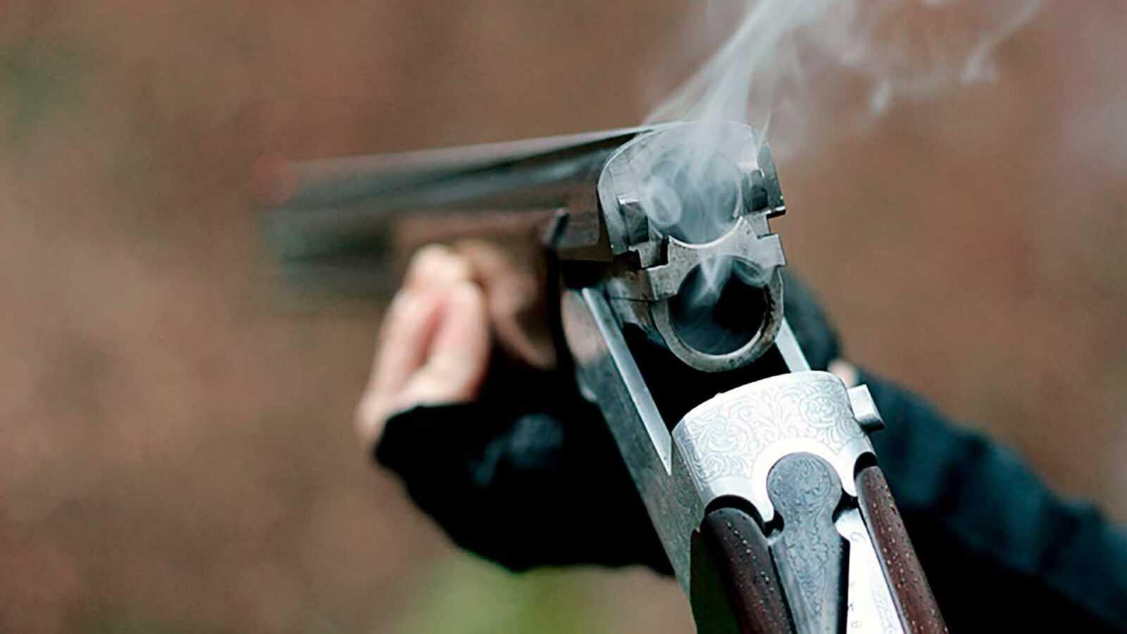 Выстрел по воробьям